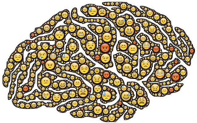 Activité cérébrale des personnes timides